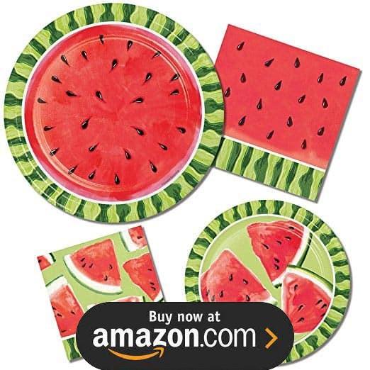 Watermelon Summer Picnic Birthday Supplies